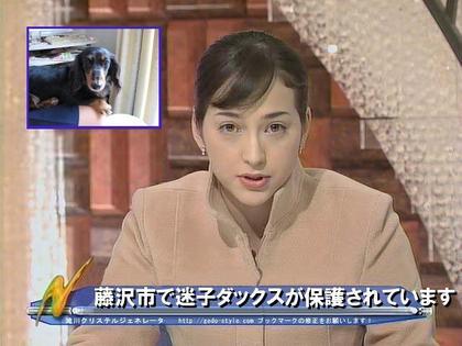 Straydogfujisawa